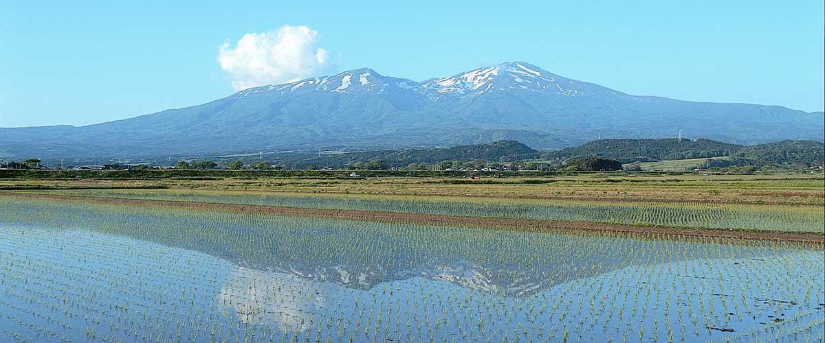 鳥海山と田園の画像